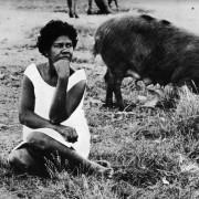 Al pascolo con rabbia (Cabo, Brasile) 1968