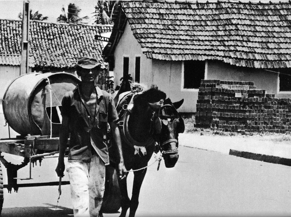 Venditore d'acqua del Pernambuco 1968